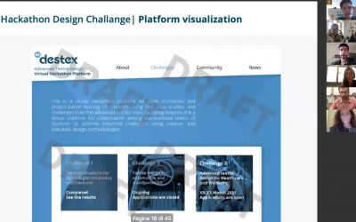 Follow-up Destex virtual meeting